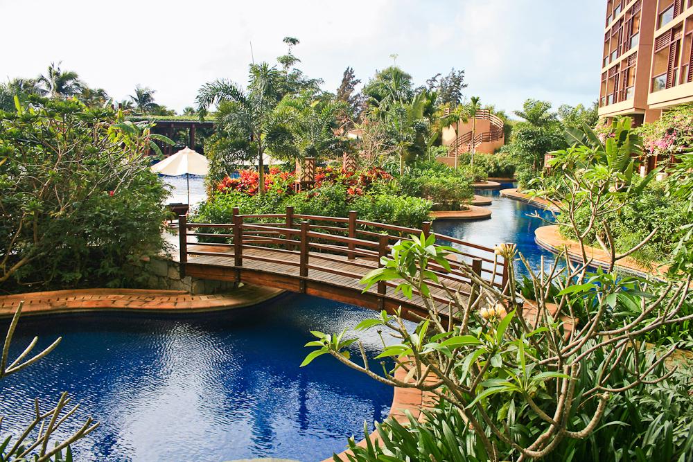 Mangrove Tree Hotel-6