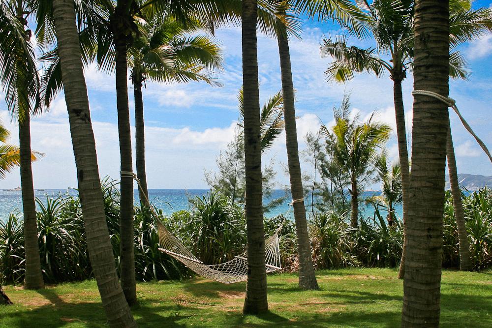 Mangrove Tree Hotel-8