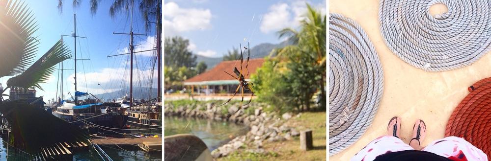 instagram_travel_reise_tagebuch_diary_seychellen_kreuzfahrt_straende_03