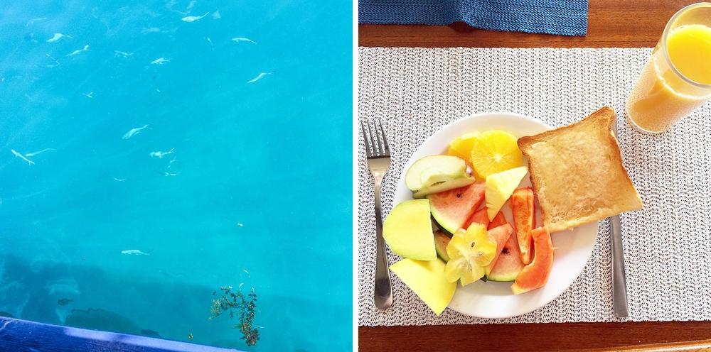 instagram_travel_reise_tagebuch_diary_seychellen_kreuzfahrt_straende_05