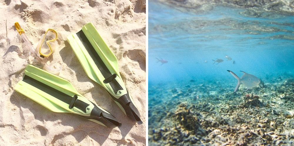 instagram_travel_reise_tagebuch_diary_seychellen_kreuzfahrt_straende_10